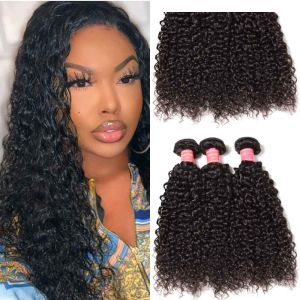 Donmily Brazilian Curly Hair 3 Bundles Human Hair