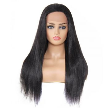 Donmily Long Synthetic Straight Lace Front Wig Free Part