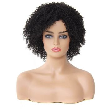 Synthetic Wigs Short Kinky Curly
