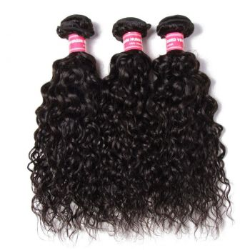 Donmily 3 Bundles Malaysia Water Wave with 4x4 Lace Closure
